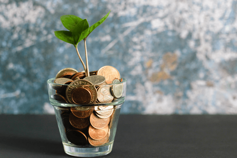 coins and green plant growing in glass bottle
